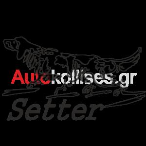 Αυτοκόλλητα κυνηγετικά Setter 02