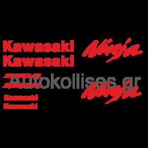 Αυτοκόλλητα ΜΟΤΟ Kawasaki Ninja 250R (2009-2013),Kawasaki Ninja 250R