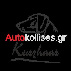 Αυτοκόλλητα κυνηγετικά KURZHAAR 02