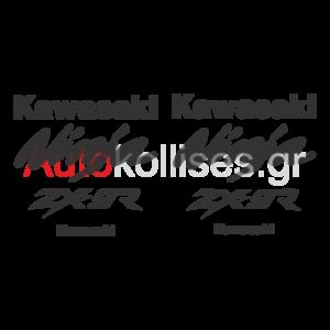 kawasaki ninja zx 9r,αυτοκολλητα για μοτοσυκλετα kawasaki ninja,kawasaki,ninja